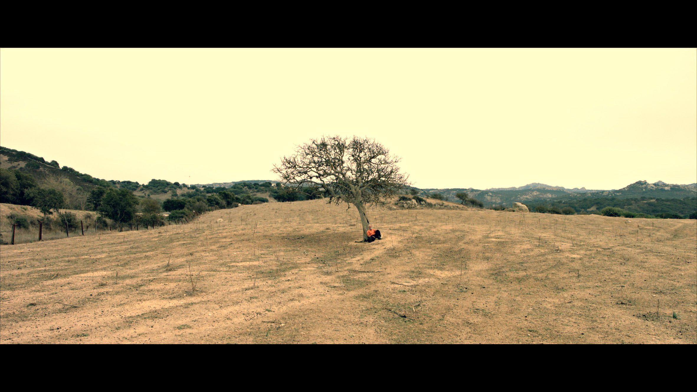 """Presentato il progetto cinematografico """"The man of trees"""" – L'Uomo delle Querce"""