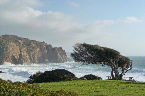 Sardegna sferzata dal vento