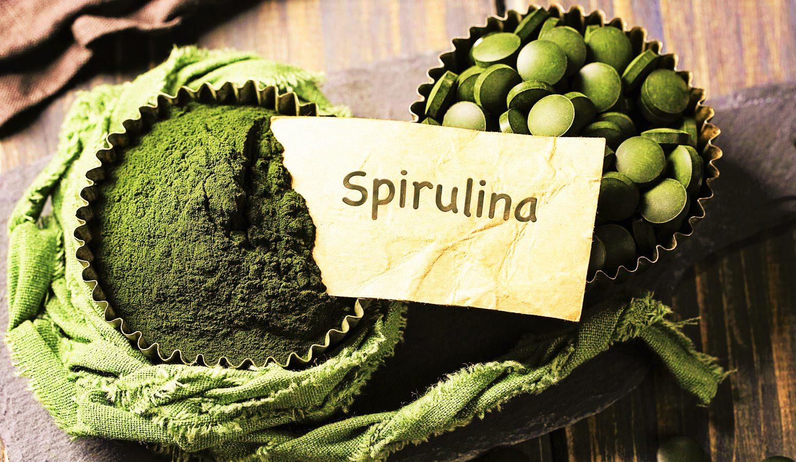 Al via in Sardegna la produzione dell'alga spirulina