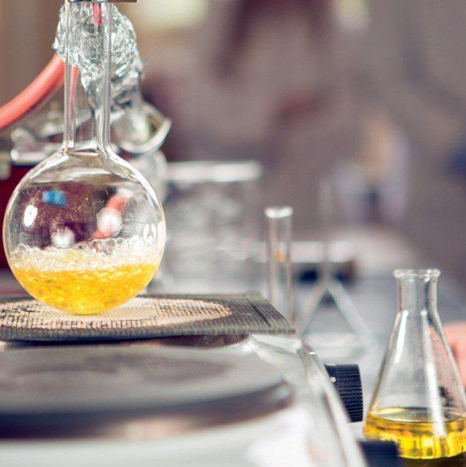 Tutto in una goccia: le tisane sarde in olio essenziale uniche al mondo