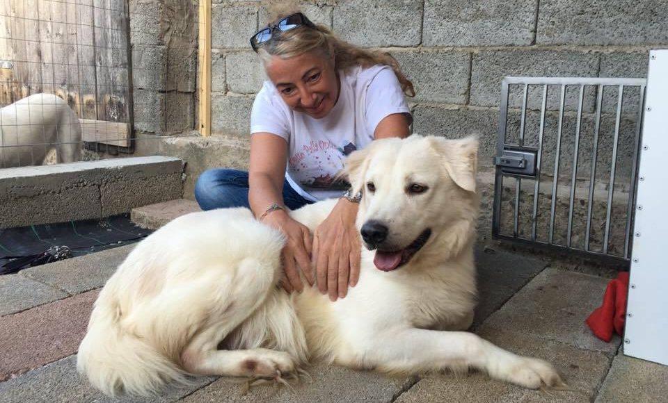 Monica Pais, la veterinaria più amata e seguita di Italia, ci racconta il suo ultimo libro