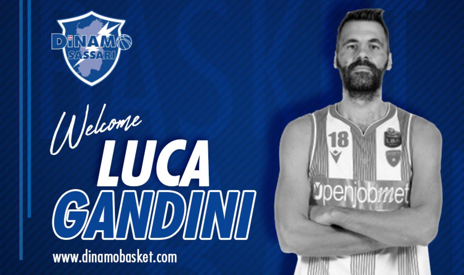 La Dinamo fa centro con Luca Gandini