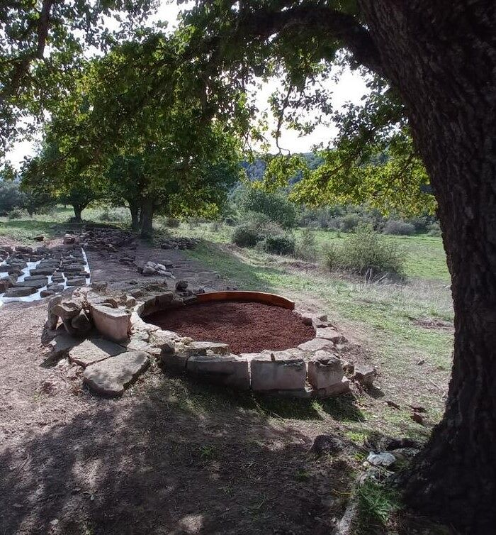 Archeologia, eccezionale ritrovamento nel nord Sardegna
